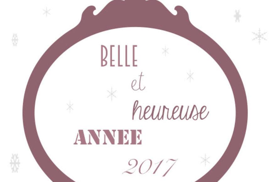 *** Meilleurs voeux 2017 ***